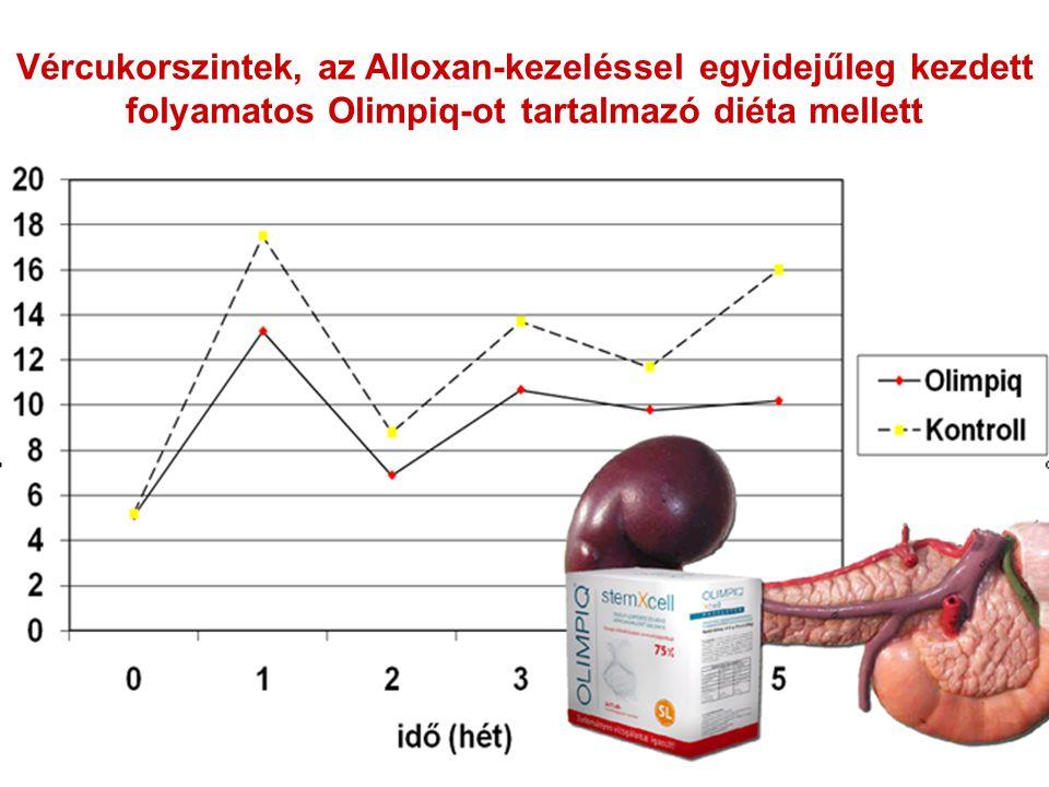 Vércukorszintek, az Alloxan-kezeléssel egyidejűleg kezdett folyamatos Olimpiq-ot tartalmazó diéta mellett