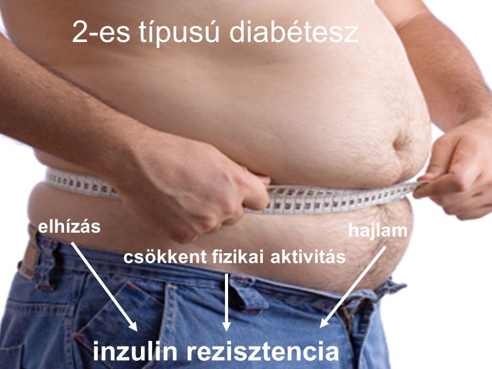 Diabéteszes nefropátia A végső állapot: dialízis