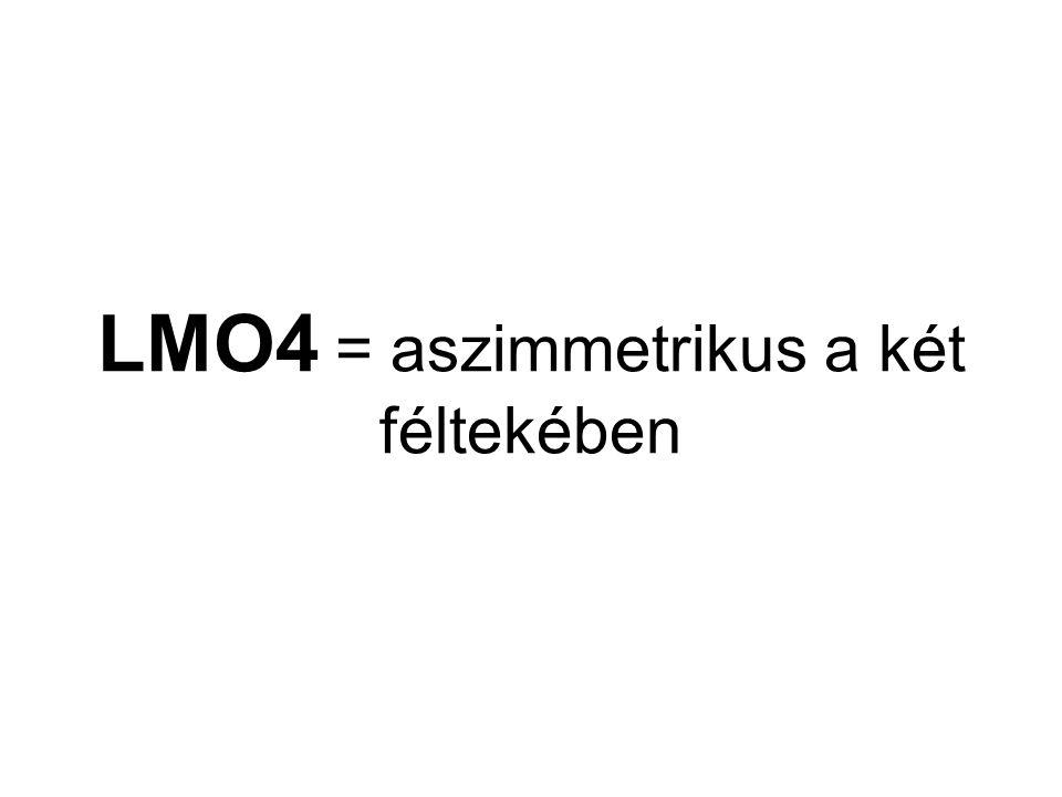 LMO4 = aszimmetrikus a két féltekében