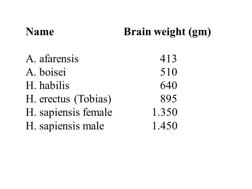 Name Brain weight (gm) A. afarensis 413 A. boisei 510 H.