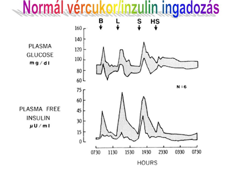 Pharmacokinetics of Insulin Preparations