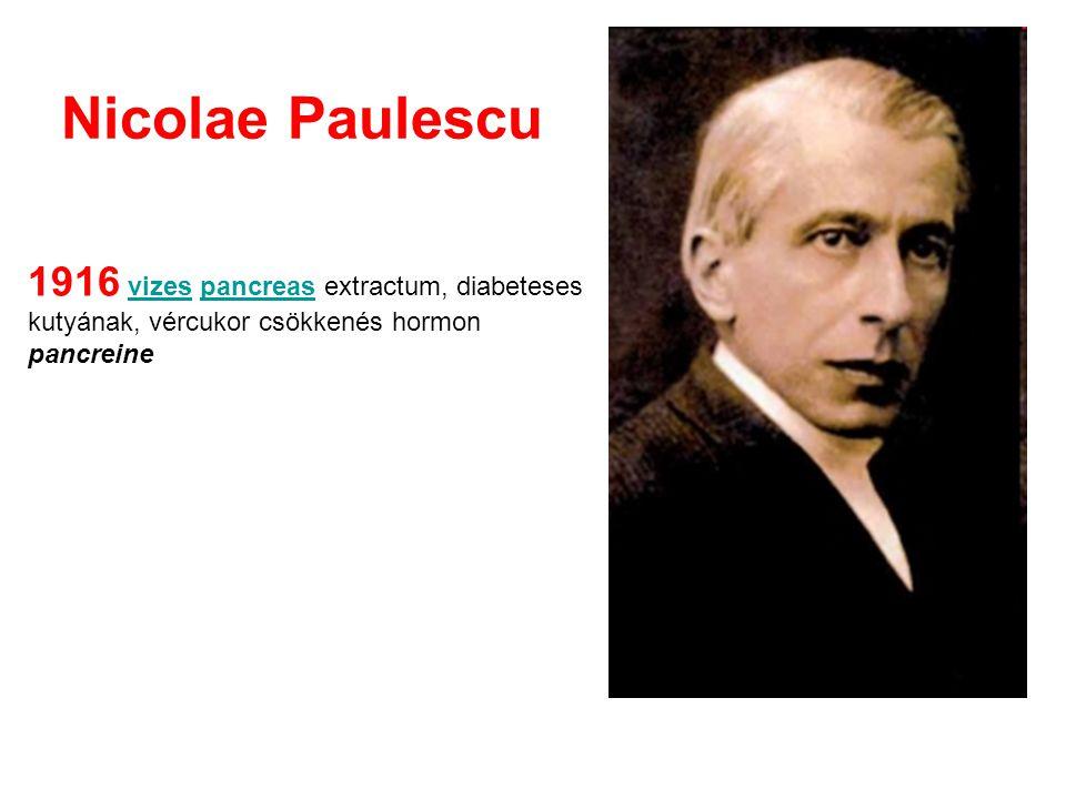 Nicolae Paulescu 1916 vizes pancreas extractum, diabeteses kutyának, vércukor csökkenés hormon pancreinevizespancreas