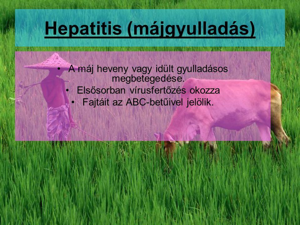 Hepatitis (májgyulladás) A máj heveny vagy idült gyulladásos megbetegedése. Elsősorban vírusfertőzés okozza Fajtáit az ABC-betűivel jelölik.