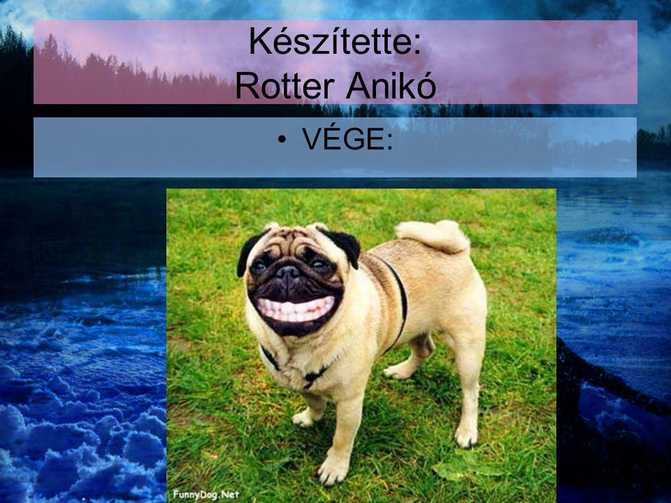 Készítette: Rotter Anikó VÉGE: