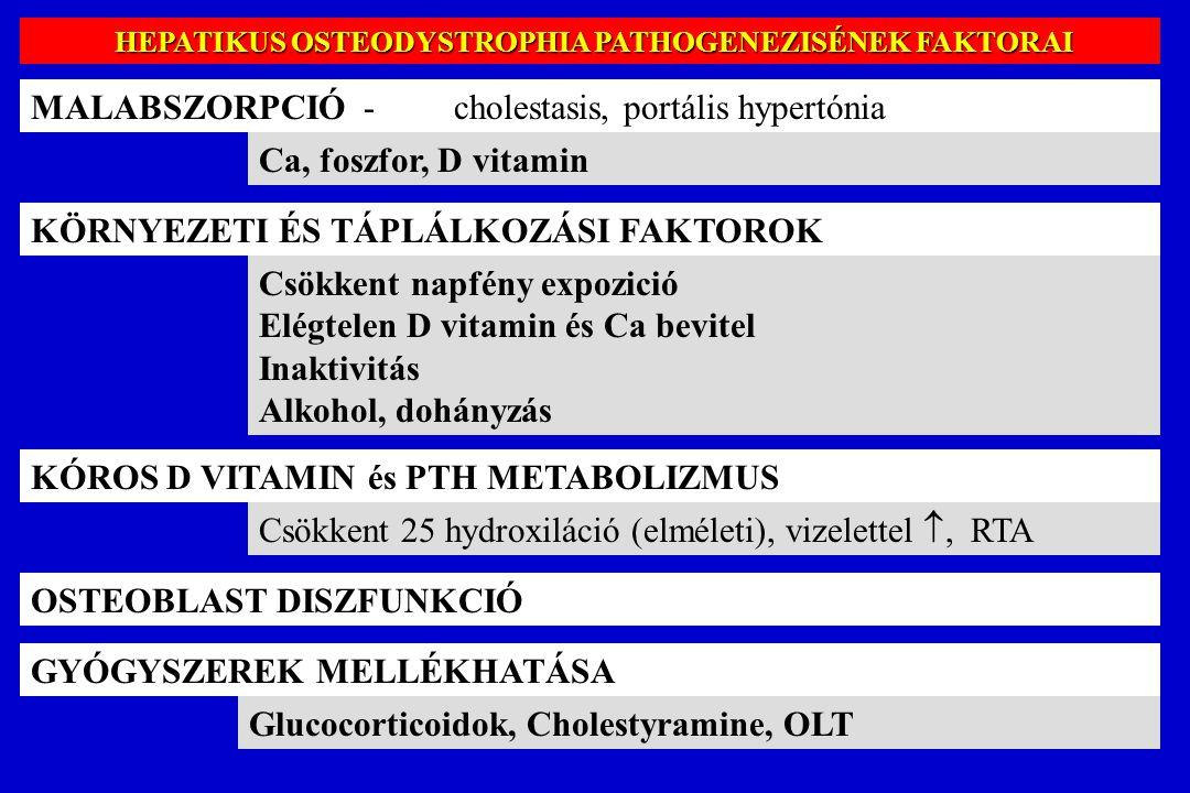 HEPATIKUS OSTEODYSTROPHIA PATHOGENEZISÉNEK FAKTORAI HEPATIKUS OSTEODYSTROPHIA PATHOGENEZISÉNEK FAKTORAI MALABSZORPCIÓ - cholestasis, portális hypertón
