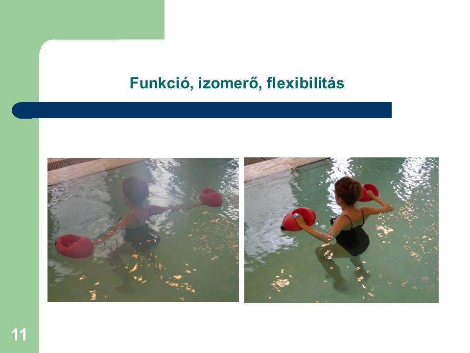 11 Funkció, izomerő, flexibilitás
