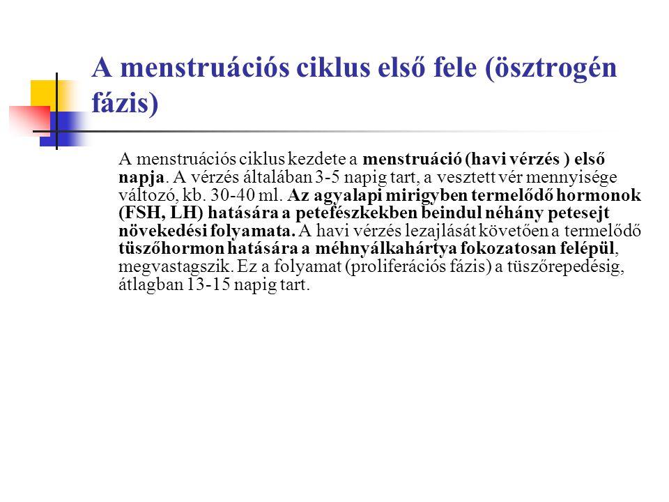 A menstruációs ciklus első fele (ösztrogén fázis) A menstruációs ciklus kezdete a menstruáció (havi vérzés ) első napja.