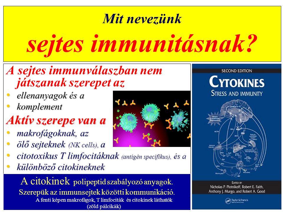 Vitaminok C-vitamin – – Citokin előállítás serkentése – – Semlegesíti a fagocitákból feleslegben kiszabadult autoreaktív és immunszupreszszív oxidánsokat Hiányában – – csökken a neutrofilek és a makrofágok baktériumölő és mozgásképessége – – gyengül a sejtes immunitás hatékonysága – – C-vitamin igény megnő sebgyógyulás, fertőző betegségek, rák esetén A fagocitáló fehérvérsejtekben 50-szer nagyobb koncentrációban kell legyen, mint a környezetben