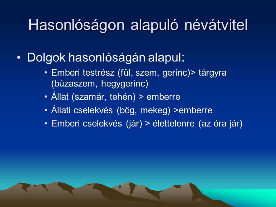 Hasonlóságon alapuló névátvitel Dolgok hasonlóságán alapul: Emberi testrész (fül, szem, gerinc)> tárgyra (búzaszem, hegygerinc) Állat (szamár, tehén)
