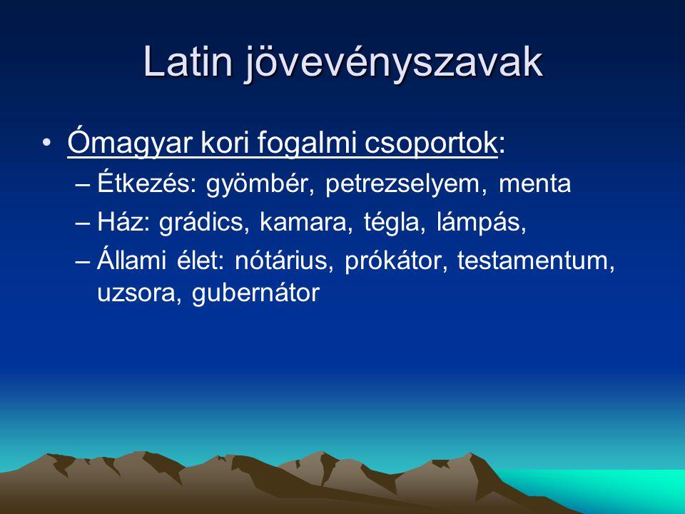 Latin jövevényszavak Ómagyar kori fogalmi csoportok: –Étkezés: gyömbér, petrezselyem, menta –Ház: grádics, kamara, tégla, lámpás, –Állami élet: nótári