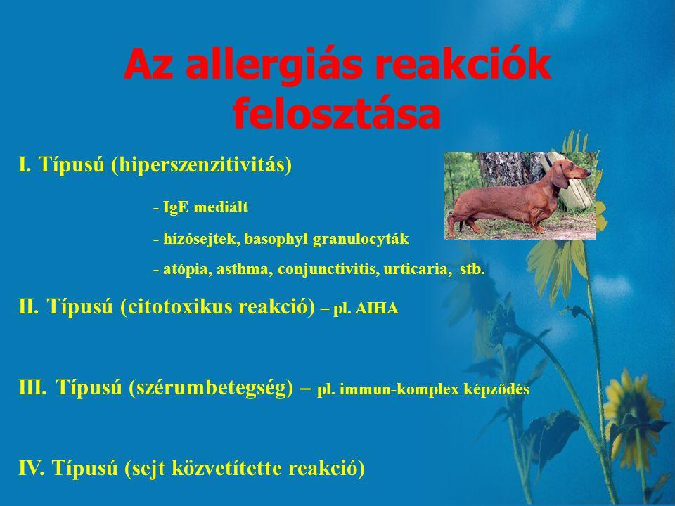 Az allergiás reakciók felosztása I.