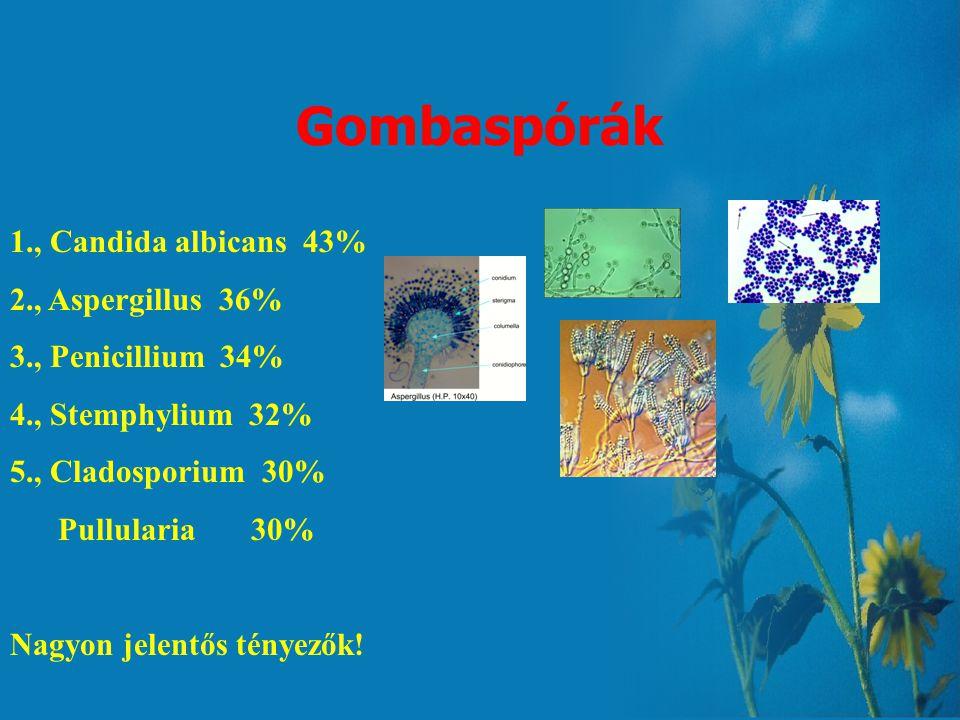 Pollenstatisztika Fák, cserjék 1., Fehér fűz (Salix alba) 52% Korai juhar (Acer platanoides) 52% 2., Fehér akác (Robinia pseudoacacia) 48% 3., Mezei s