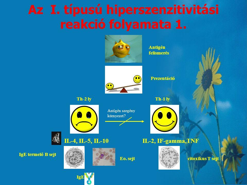 Immunglobulinok IgE: - a szérumban alacsony koncentrációban van jelen - nagy az affinitása a hízósejtekhez - az I. típusú hiperszenzitivitás kiváltója