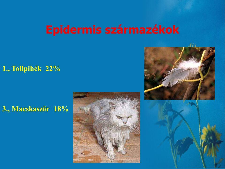Gombaspórák 1., Candida albicans 43% 2., Aspergillus 36% 3., Penicillium 34% 4., Stemphylium 32% 5., Cladosporium 30% Pullularia 30% Nagyon jelentős t