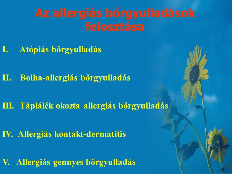 Az allergia tünetei Légzőszervi tünetek: –Köhögés –Tüsszögés –Orrfolyás Gastrointestinalis tünetek: –Hányás/hasmenés De a leggyakrabban a bőr elváltoz