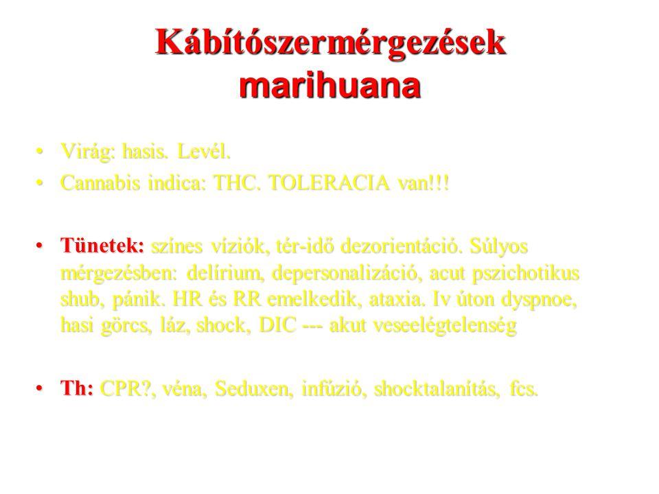 Kábítószermérgezések marihuana Virág: hasis. Levél.Virág: hasis. Levél. Cannabis indica: THC. TOLERACIA van!!!Cannabis indica: THC. TOLERACIA van!!! T
