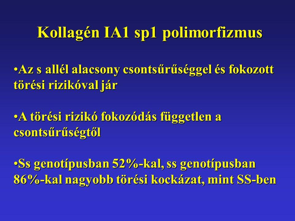 Kollagén IA1 sp1 polimorfizmus Az s allél alacsony csontsűrűséggel és fokozott törési rizikóval járAz s allél alacsony csontsűrűséggel és fokozott tör