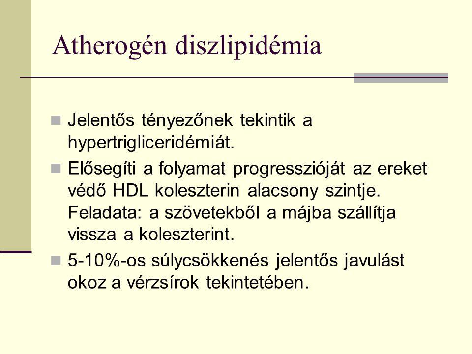 Atherogén diszlipidémia Jelentős tényezőnek tekintik a hypertrigliceridémiát.