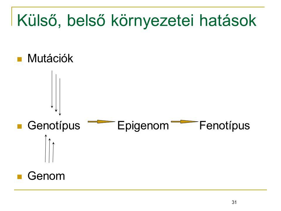 31 Külső, belső környezetei hatások Mutációk Genotípus Epigenom Fenotípus Genom 31