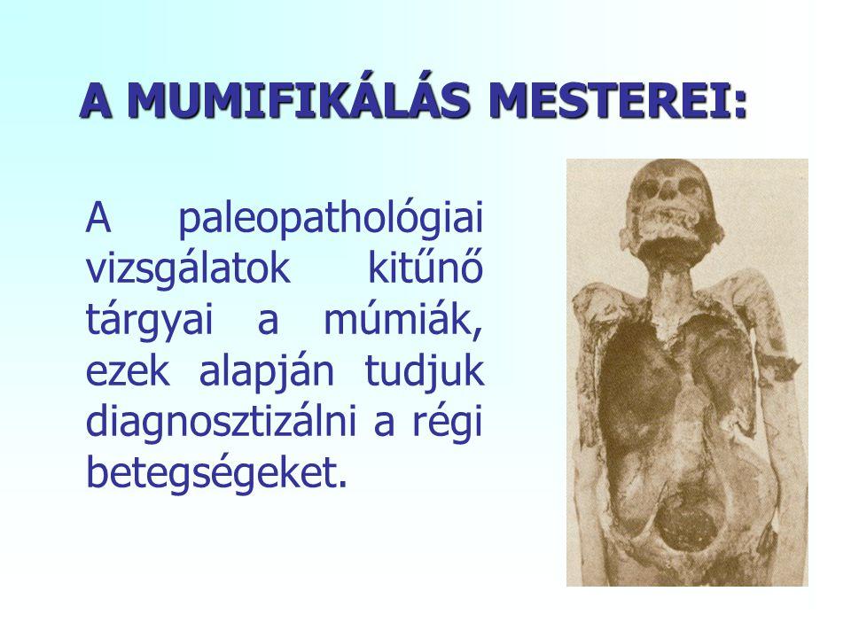 A MUMIFIKÁLÁS MESTEREI: A paleopathológiai vizsgálatok kitűnő tárgyai a múmiák, ezek alapján tudjuk diagnosztizálni a régi betegségeket.