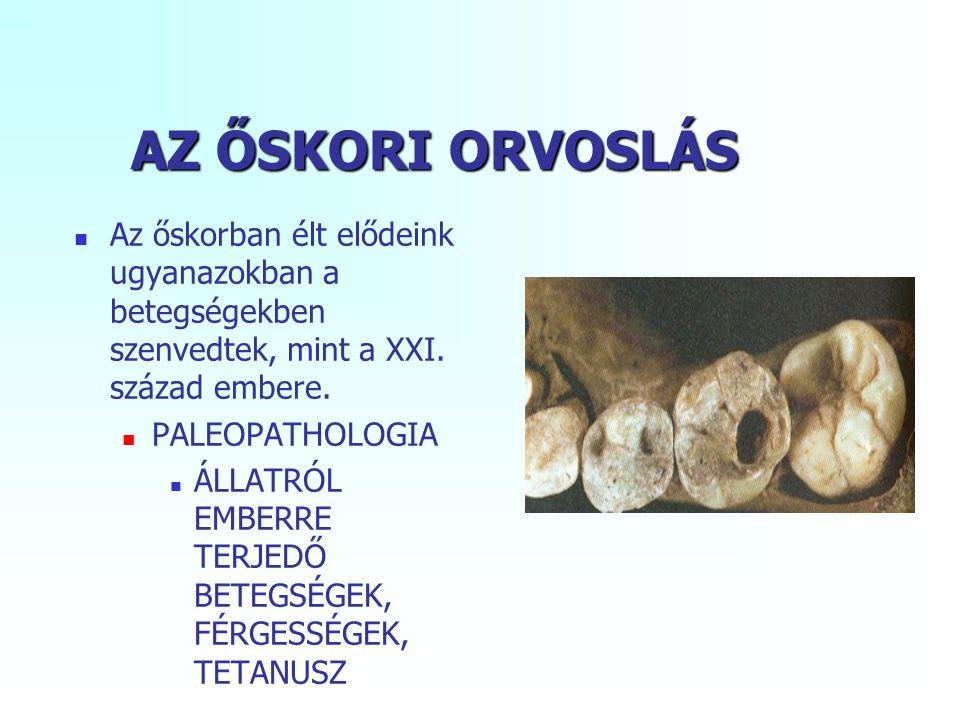 AZ ŐSKORI ORVOSLÁS Az őskorban élt elődeink ugyanazokban a betegségekben szenvedtek, mint a XXI. század embere. PALEOPATHOLOGIA ÁLLATRÓL EMBERRE TERJE