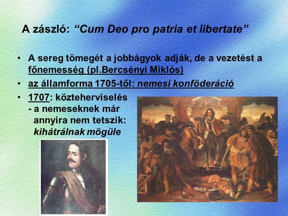 """A zászló: """"Cum Deo pro patria et libertate"""" A sereg tömegét a jobbágyok adják, de a vezetést a főnemesség (pl.Bercsényi Miklós) az államforma 1705-től"""