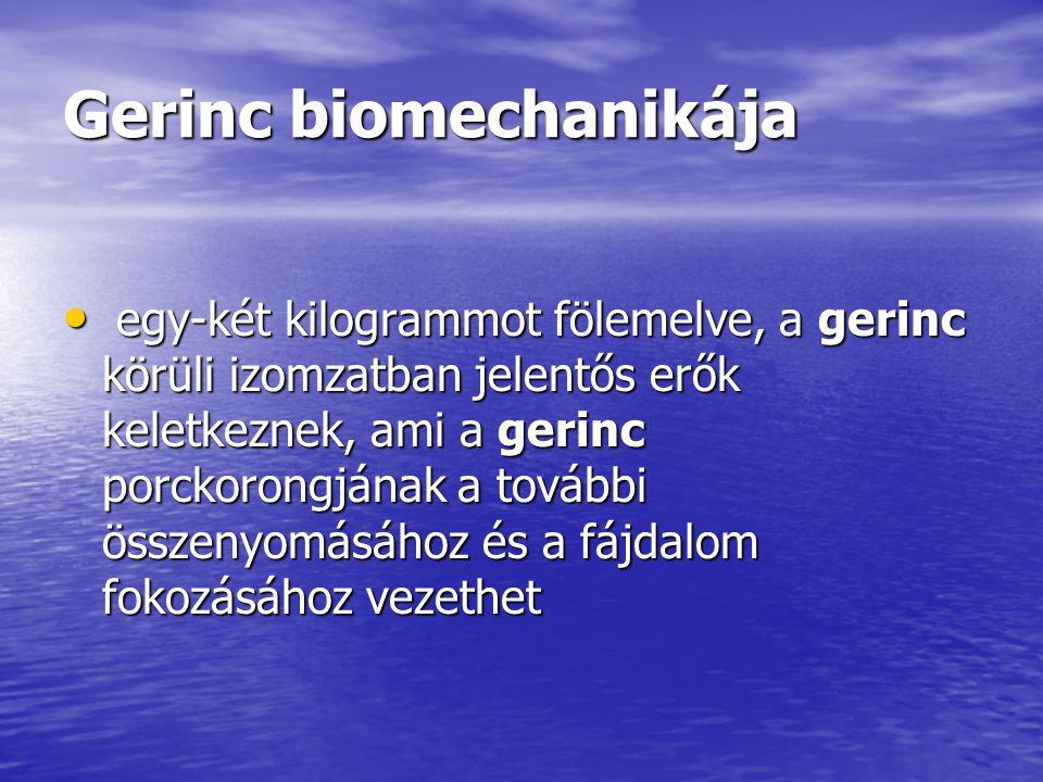Gerinc biomechanikája egy-két kilogrammot fölemelve, a gerinc körüli izomzatban jelentős erők keletkeznek, ami a gerinc porckorongjának a további össz