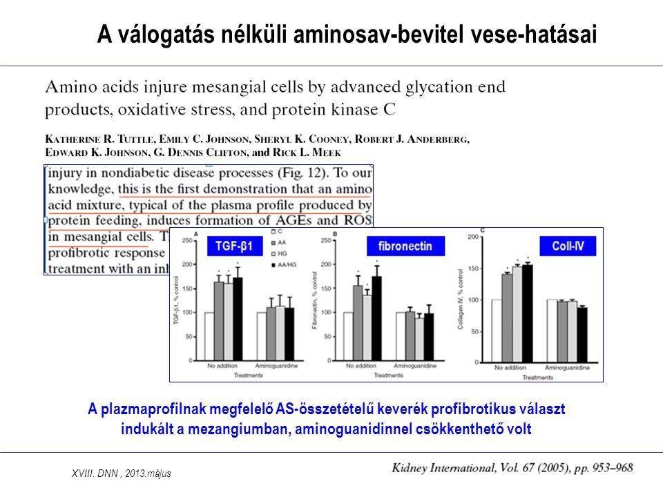 A plazmaprofilnak megfelelő AS-összetételű keverék profibrotikus választ indukált a mezangiumban, aminoguanidinnel csökkenthető volt A válogatás nélküli aminosav-bevitel vese-hatásai XVIII.