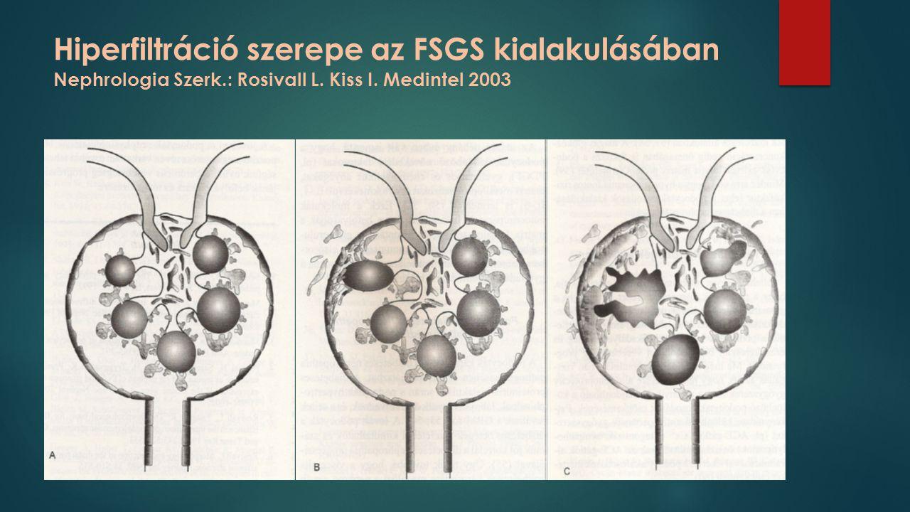 Hiperfiltráció szerepe az FSGS kialakulásában Nephrologia Szerk.: Rosivall L. Kiss I. Medintel 2003
