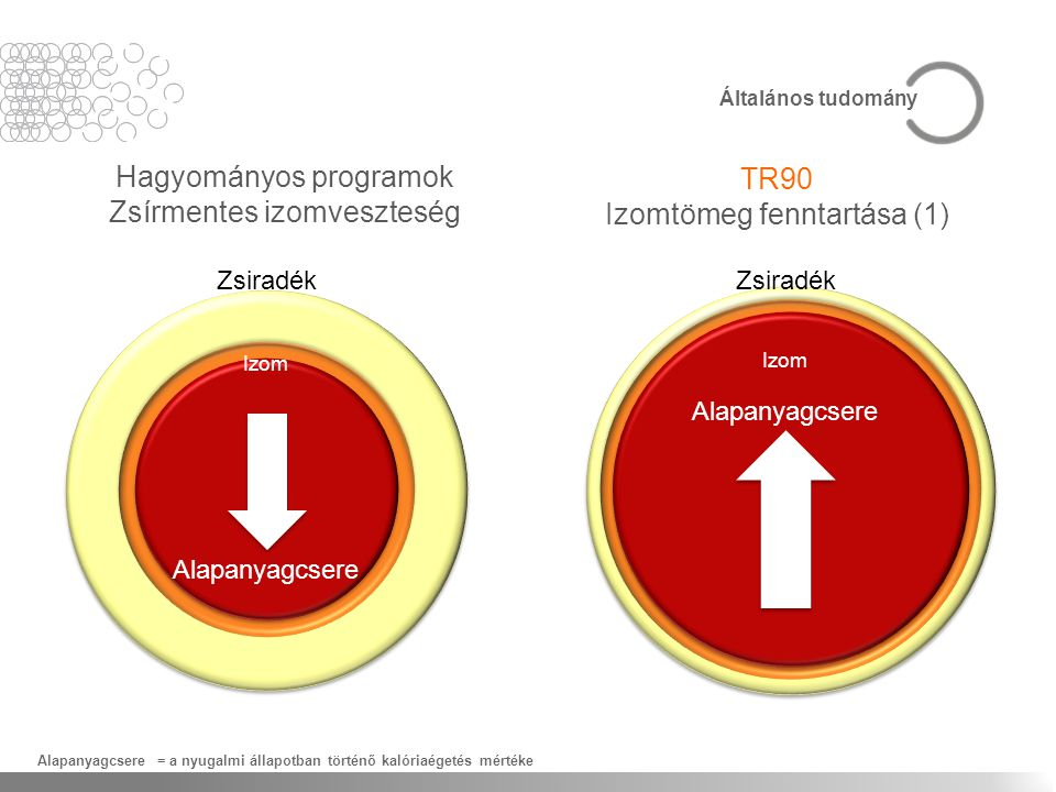 Hagyományos programok Zsírmentes izomveszteség TR90 Izomtömeg fenntartása (1) Alapanyagcsere = a nyugalmi állapotban történő kalóriaégetés mértéke Ált
