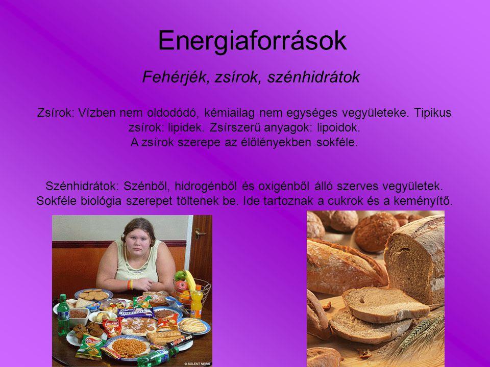 -Kevés sóval készítsük az ételeket, utólag ne sózzunk: a mérsékelten sós ízt nagyon gyorsan meg lehet szokni.