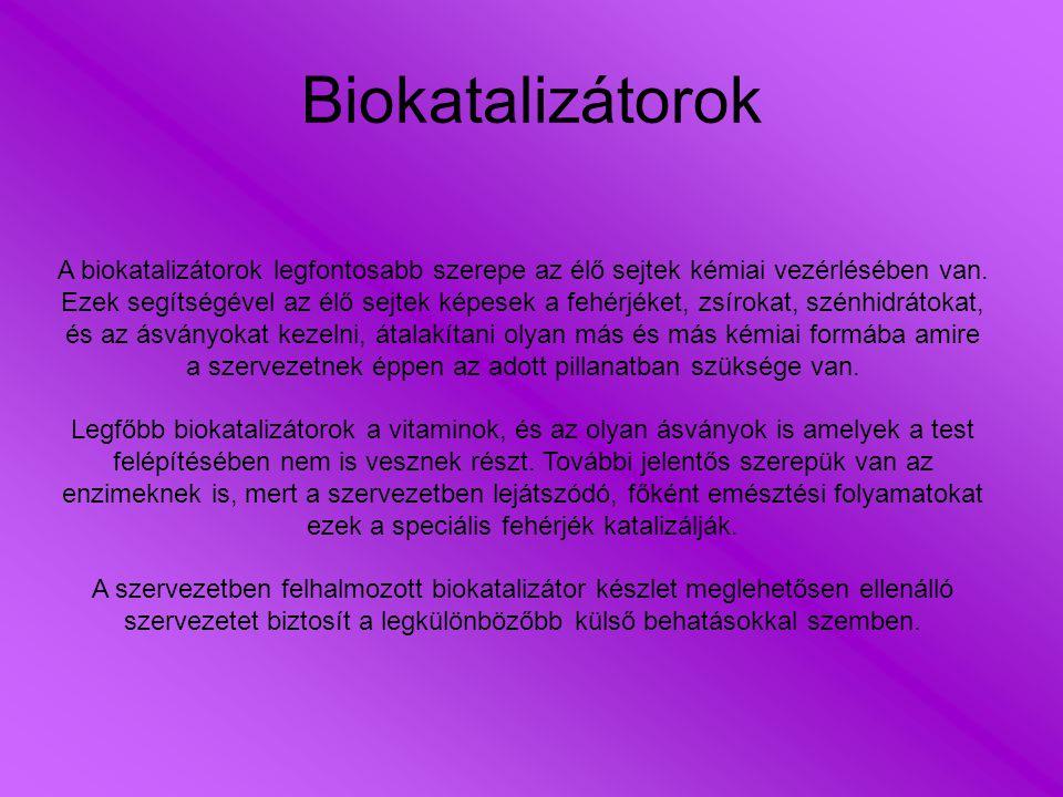 Biokatalizátorok A biokatalizátorok legfontosabb szerepe az élő sejtek kémiai vezérlésében van.