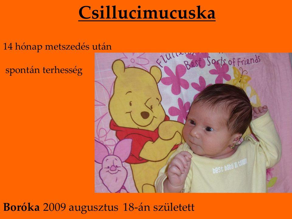 Csillucimucuska 14 hónap metszedés után spontán terhesség Boróka 2009 augusztus 18-án született
