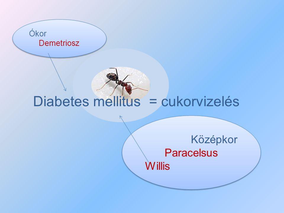 Középkor Paracelsus Willis Középkor Paracelsus Willis Diabetes mellitus = cukorvizelés Ókor Demetriosz Ókor Demetriosz