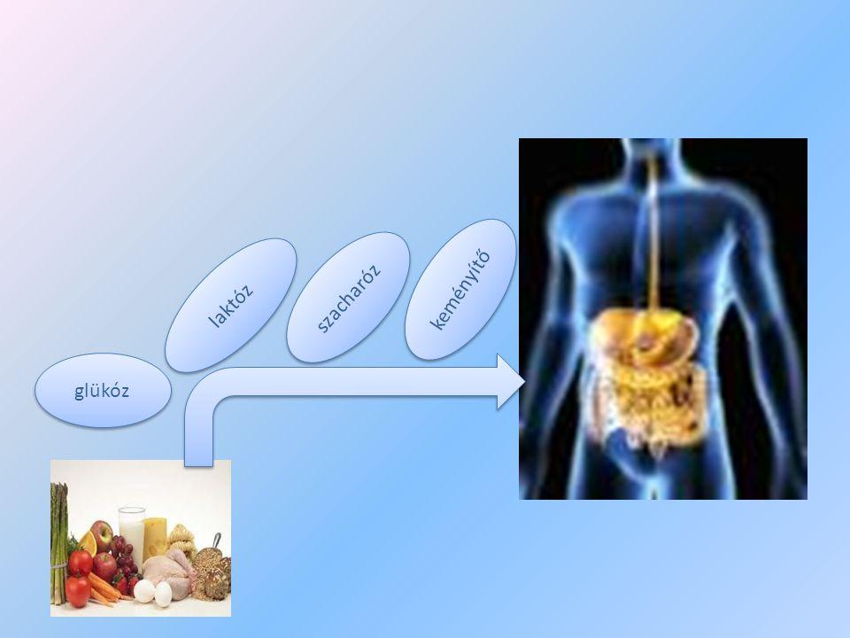 glükóz laktóz szacharóz keményítő