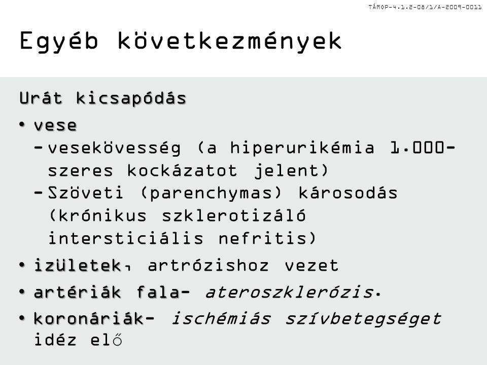 TÁMOP-4.1.2-08/1/A-2009-0011 Urát kicsapódás vesevese -vesekövesség (a hiperurikémia 1.000- szeres kockázatot jelent) -Szöveti (parenchymas) károsodás (krónikus szklerotizáló intersticiális nefritis) izületekizületek, artrózishoz vezet artériák falaartériák fala- ateroszklerózis.