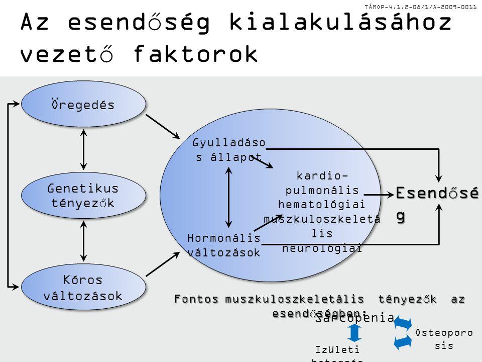 TÁMOP-4.1.2-08/1/A-2009-0011 Esendősé g Gyulladáso s állapot Hormonális változások kardio- pulmonális hematológiai muszkuloszkeletá lis neurológiai Fontos muszkuloszkeletális tényezők az esendőségben: Sarcopenia Izületi betegség Osteoporo sis Öregedés Genetikus tényezők Kóros változások Az esendőség kialakulásához vezető faktorok