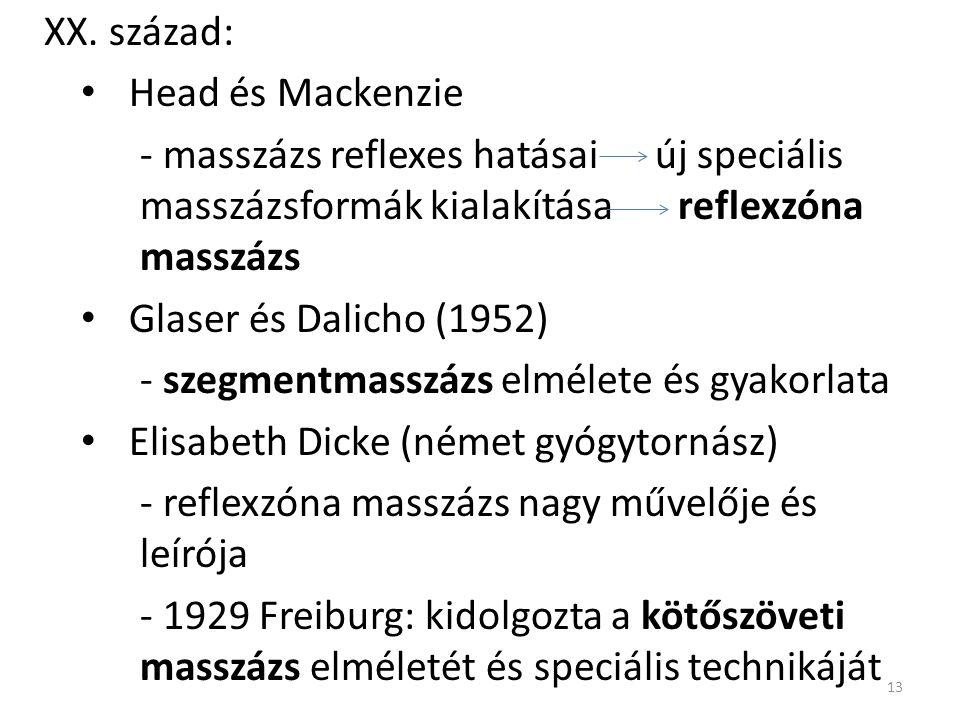 XX. század: Head és Mackenzie - masszázs reflexes hatásai új speciális masszázsformák kialakítása reflexzóna masszázs Glaser és Dalicho (1952) - szegm