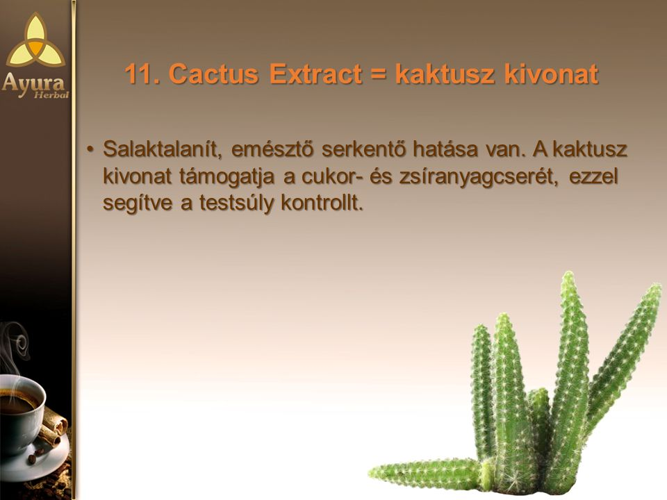 11.Cactus Extract = kaktusz kivonat Salaktalanít, emésztő serkentő hatása van.