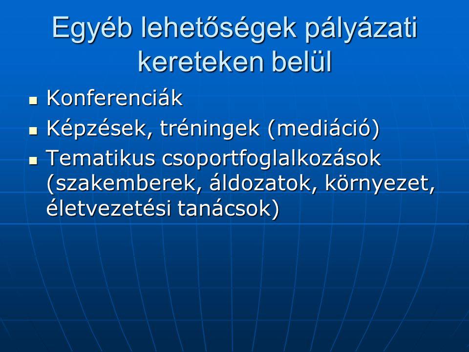 Egyéb lehetőségek pályázati kereteken belül Konferenciák Konferenciák Képzések, tréningek (mediáció) Képzések, tréningek (mediáció) Tematikus csoportf