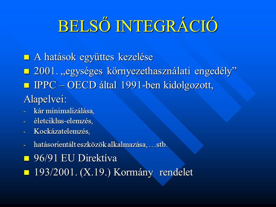 BELSŐ INTEGRÁCIÓ A hatások együttes kezelése A hatások együttes kezelése 2001.