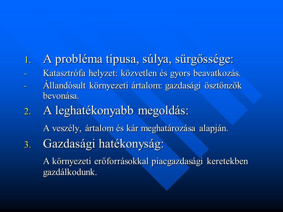 1. A probléma típusa, súlya, sürgőssége: - Katasztrófa helyzet: közvetlen és gyors beavatkozás.