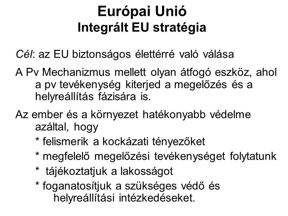 Európai Unió Integrált EU stratégia Cél: az EU biztonságos élettérré való válása A Pv Mechanizmus mellett olyan átfogó eszköz, ahol a pv tevékenység k