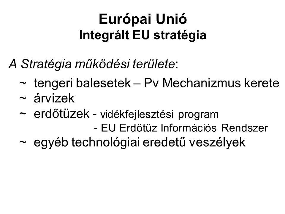 Európai Unió Integrált EU stratégia A Stratégia működési területe: ~ tengeri balesetek – Pv Mechanizmus kerete ~ árvizek ~ erdőtüzek - vidékfejlesztés