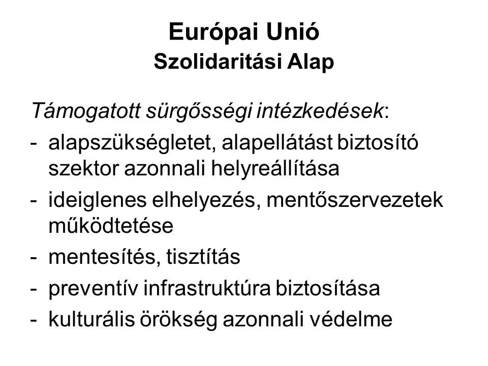 Európai Unió Szolidaritási Alap Támogatott sürgősségi intézkedések: -alapszükségletet, alapellátást biztosító szektor azonnali helyreállítása -ideigle
