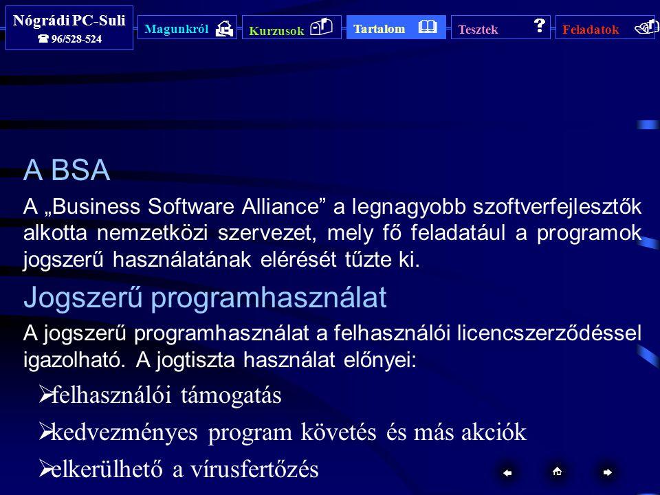 """Magunkról  Kurzusok  Tartalom  Tesztek  Feladatok  Nógrádi PC-Suli  96/528-524 Nógrádi PC-Suli  96/528-524 Magunkról  Kurzusok  Tartalom  Tesztek  Feladatok  A BSA A """"Business Software Alliance a legnagyobb szoftverfejlesztők alkotta nemzetközi szervezet, mely fő feladatául a programok jogszerű használatának elérését tűzte ki."""
