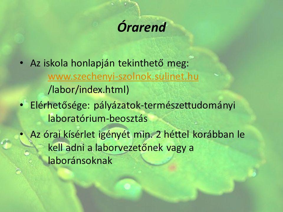 Órarend Az iskola honlapján tekinthető meg: www.szechenyi-szolnok.sulinet.hu /labor/index.html) www.szechenyi-szolnok.sulinet.hu Elérhetősége: pályáza