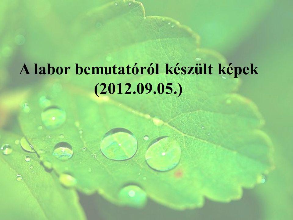 A labor bemutatóról készült képek (2012.09.05.)