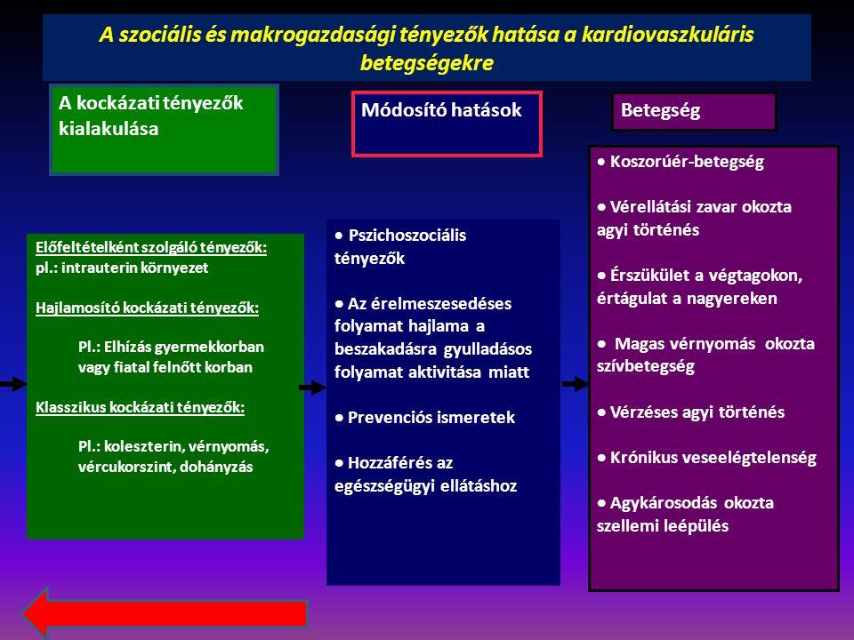 Testi struktúrák 1.fejezet Idegrendszeri struktúrák 2.