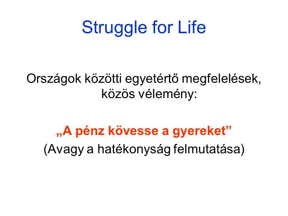 """Struggle for Life Országok közötti egyetértő megfelelések, közös vélemény: """"A pénz kövesse a gyereket (Avagy a hatékonyság felmutatása)"""